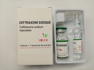 China Ceftriaxone Sodium For Injection 1.0G 0.5G Antibiotic Medicines BP / USP supplier