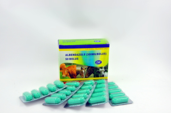 China Albendazole Bolus 150MG 300 MG 1500MG Veterinary Medicines 5*10's / Box distributor